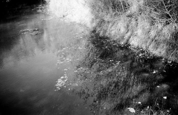 acqua-e-sassi-erba