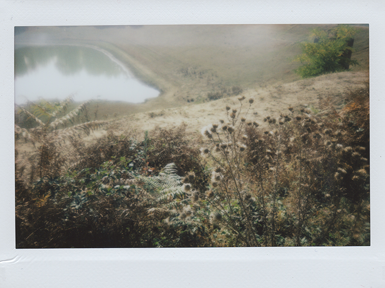 Polaroid 05-crop2-mini